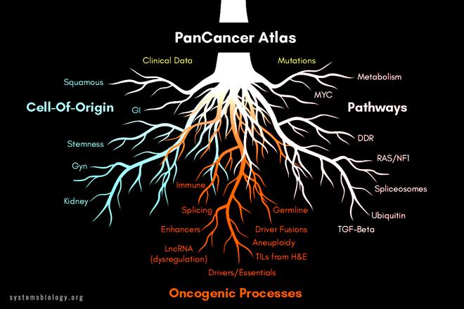 Siêu dự án gen mở ra kỷ nguyên mới trong trận chiến của con người với ung thư - Ảnh 3.