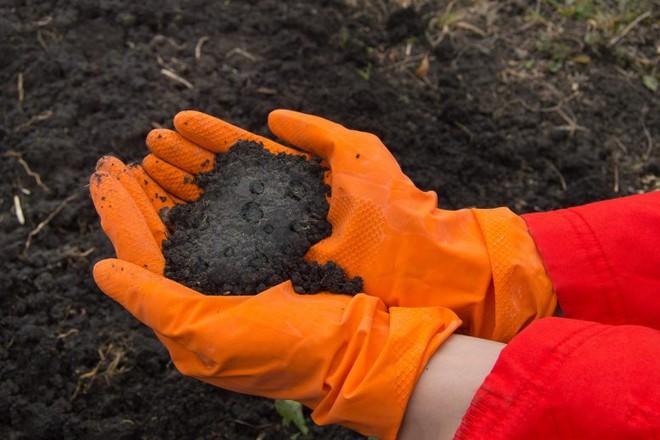 Phát hiện ra quả bom hẹn giờ ẩn trong đất: chất hóa học công nghiệp có khả năng ảnh hưởng tới hệ miễn dịch và khả năng sinh sản trên người - Ảnh 1.