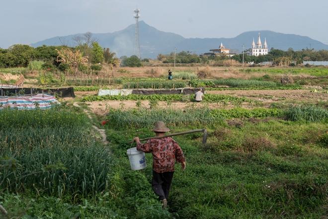Trung Quốc đang nỗ lực xóa bỏ những khu chợ ẩm ướt để hạn chế tối đa dịch bệnh như thế nào? - Ảnh 10.