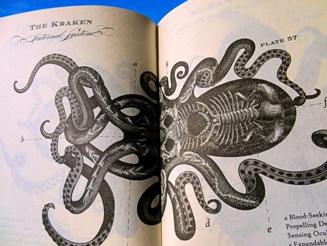 Quỷ khổng lồ Biển Bắc: Sinh vật có cùng kích thước với cá voi xanh có thể thực sự tồn tại ? - Ảnh 8.