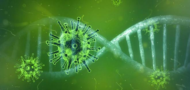 Sử dụng công nghệ mới, Mỹ xuất xưởng lô vắc-xin đầu tiên cho Covid-19, sẽ thử nghiệm trên người vào tháng 4 tới - Ảnh 4.