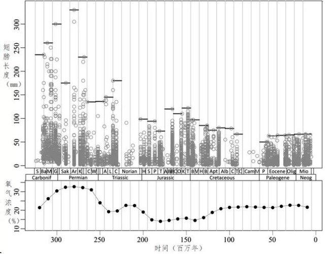 Tại sao côn trùng từ bỏ cơ thể to lớn thời tiền sử của chúng mà ngày càng thu nhỏ dần? - Ảnh 3.
