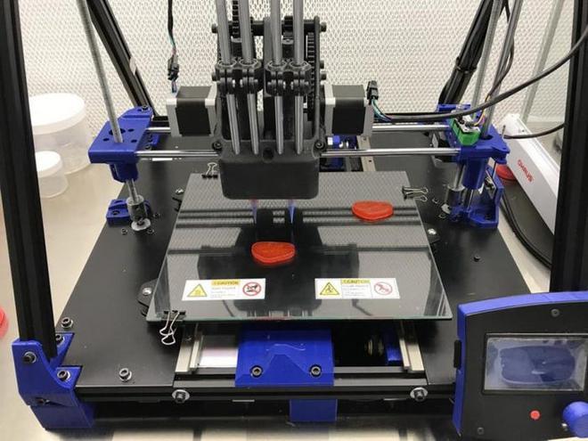 Italia nghiên cứu dùng công nghệ in 3D để tạo ra thịt chay, hướng đến giải quyết vấn đề khủng hoảng lương thực trong tương lai - Ảnh 4.