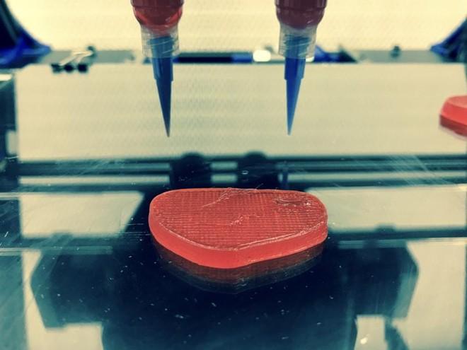 Italia nghiên cứu dùng công nghệ in 3D để tạo ra thịt chay, hướng đến giải quyết vấn đề khủng hoảng lương thực trong tương lai - Ảnh 3.