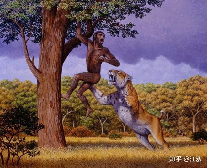 Tổ tiên của loài người đã từng gây ra sự tuyệt chủng của động vật từ 4 triệu năm về trước - Ảnh 8.