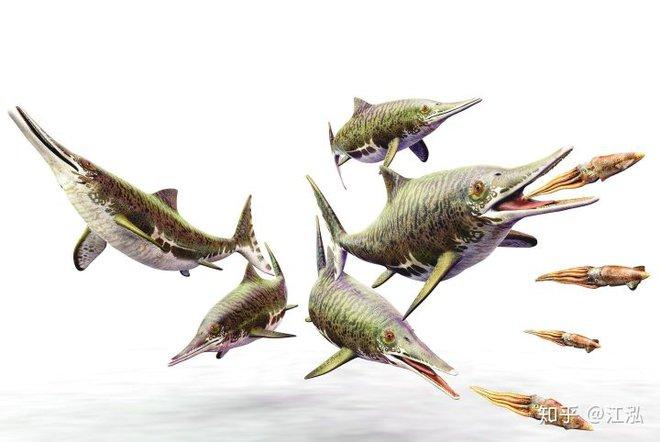 Các nhà cổ sinh vật học phát hiện ra chất béo trên cơ thể của thằn lằn cá từ 180 triệu năm trước - Ảnh 1.