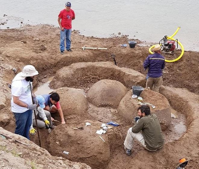Đang đi chăn bò, tình cờ phát hiện hóa thạch quái vật 20.000 năm tuổi - Ảnh 2.