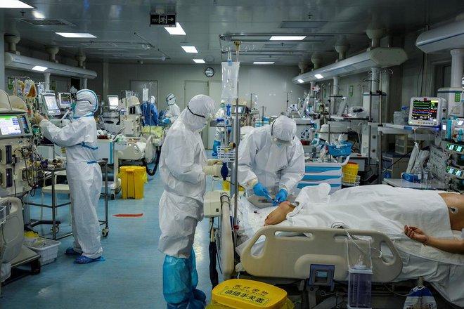 Các nhà khoa học đang chạy đua để có được vắc-xin và thuốc điều trị Covid-19 - Ảnh 1.