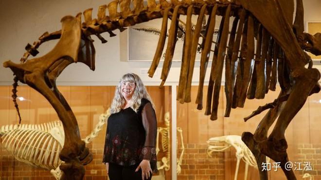 Sự tuyệt chủng của những loài động vật có vú lớn tại Bắc Mỹ đã mang tới hậu quả gì? - Ảnh 11.