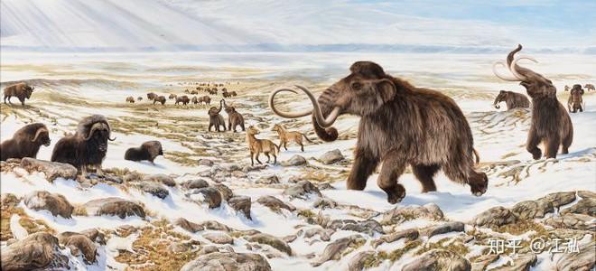 Sự tuyệt chủng của những loài động vật có vú lớn tại Bắc Mỹ đã mang tới hậu quả gì? - Ảnh 2.