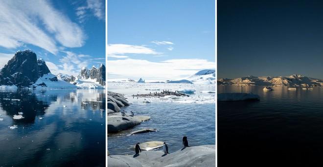 Đi tìm minh chứng về biến đổi khí hậu tại Nam Cực bằng một chiếc iPhone - Ảnh 1.