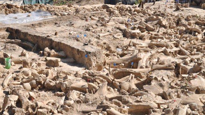 Công trình kiến trúc từ xương voi ma mút lớn nhất từ trước đến nay được tìm thấy ở Nga, cho thấy người tiền sử có lẽ khôn ngoan hơn chúng ta từng nghĩ - Ảnh 1.