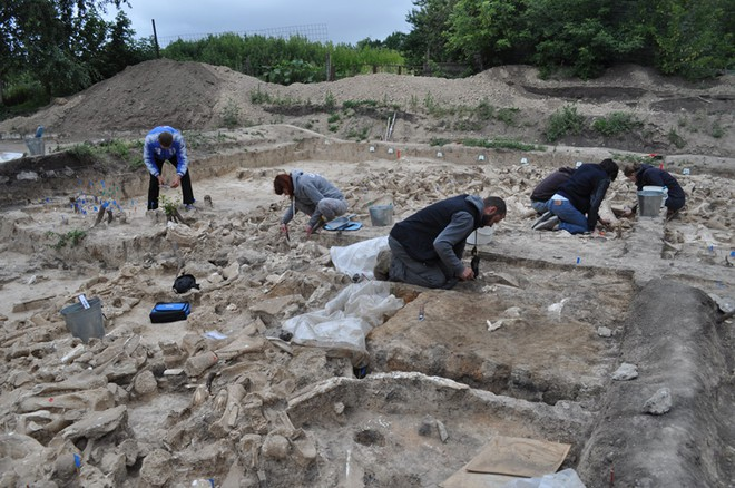 Công trình kiến trúc từ xương voi ma mút lớn nhất từ trước đến nay được tìm thấy ở Nga, cho thấy người tiền sử có lẽ khôn ngoan hơn chúng ta từng nghĩ - Ảnh 4.