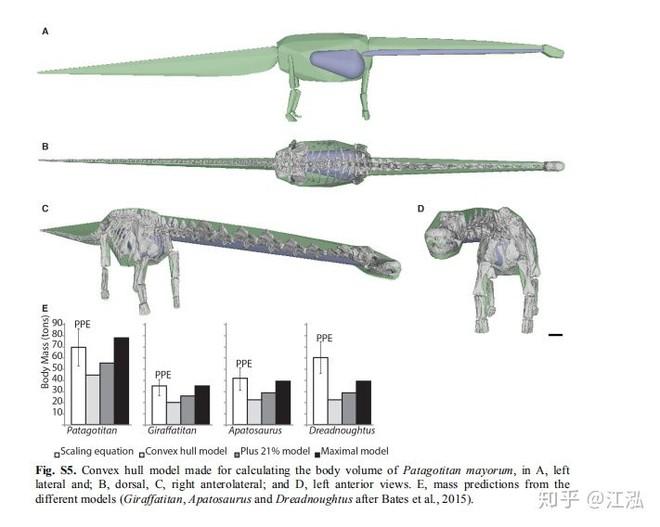 Các nhà cổ sinh vật học tính trọng lượng của khủng long như thế nào? - Ảnh 9.