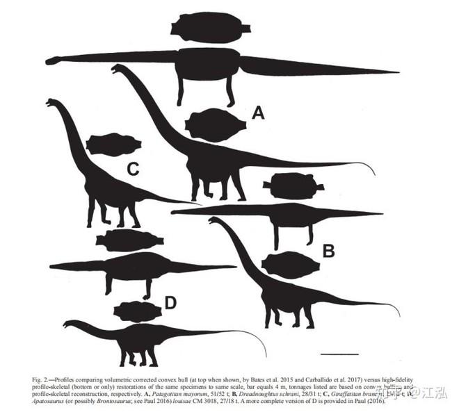 Các nhà cổ sinh vật học tính trọng lượng của khủng long như thế nào? - Ảnh 10.