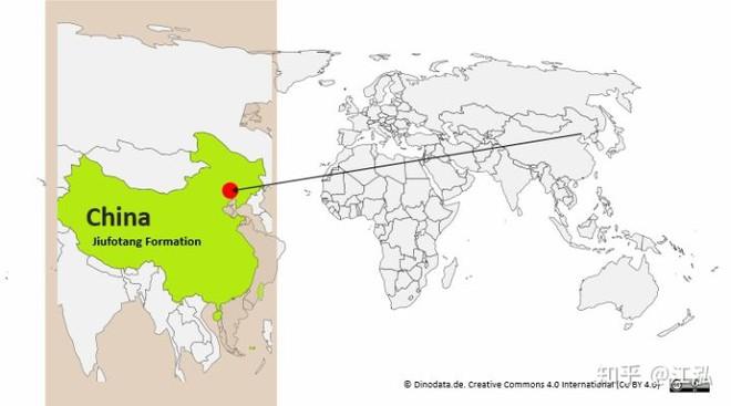 Luôn treo mình lộn ngược trên cây như loài dơi, đây nhất định là loài thằn lằn bay cổ đại kỳ lạ nhất từng tồn tại ở Trung Quốc - Ảnh 2.