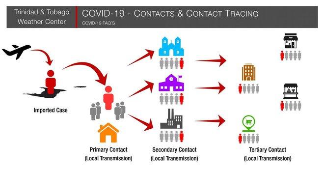 Giải ngố về quá trình từng được quân đội Mỹ phát triển từ cách đây 100 năm, có khả năng tìm ra nguồn lây COVID-19 - Ảnh 1.