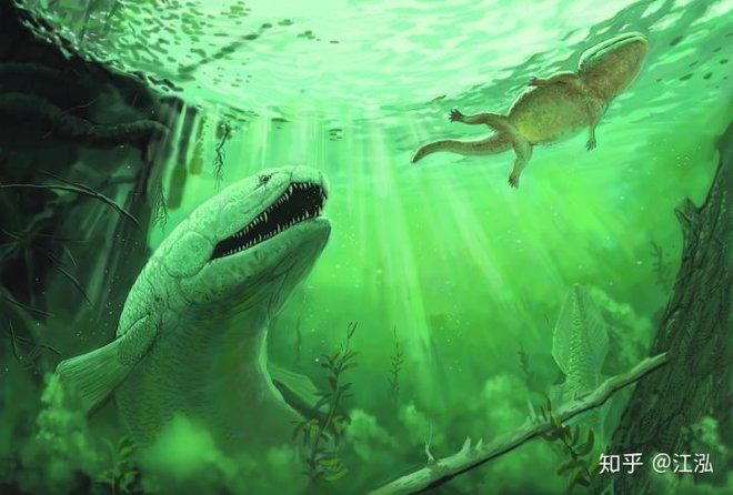 Rhizodus hibberti : Quái vật kinh hoàng của kỷ Carbon - Ảnh 9.