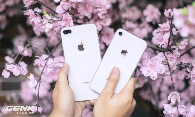 Trong tầm giá 12 - 17 triệu, đây là những mẫu smartphone đáng mua hơn iPhone SE 2020 mới - Ảnh 2.