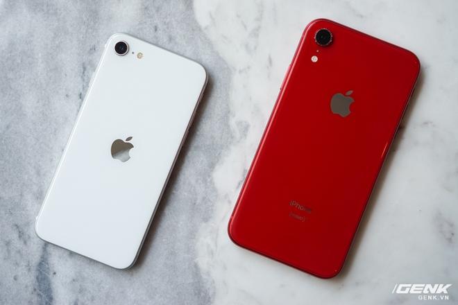Đã có kết quả bình chọn ảnh chụp giữa iPhone SE 2020 và iPhone XR: Bất ngờ lại đến từ những dòng code! - Ảnh 1.