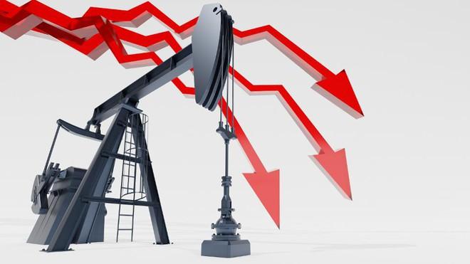 Nhân lúc giá dầu đang giảm mạnh, đầu tư mua tàu chở dầu trị giá cả chục triệu USD có khôn ngoan không? - Ảnh 4.