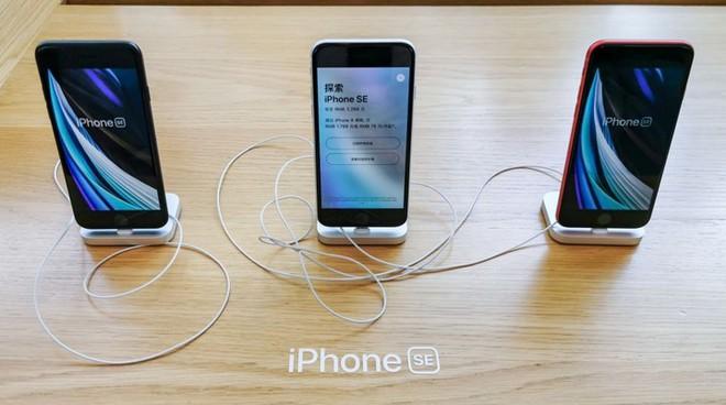 iPhone SE 2020 đang là canh bạc thành công của Apple tại Trung Quốc nhưng tất cả chỉ là tạm thời - Ảnh 2.