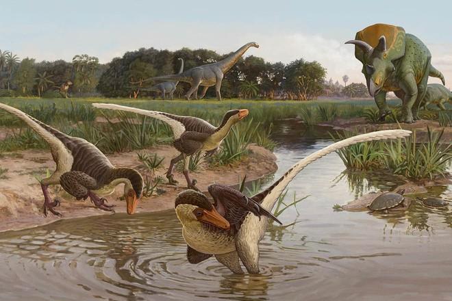 Nghiên cứu mới cho thấy người anh em của khủng long Velociraptor tại Bắc Mỹ có tổ tiên bắt nguồn từ Châu Á - Ảnh 1.