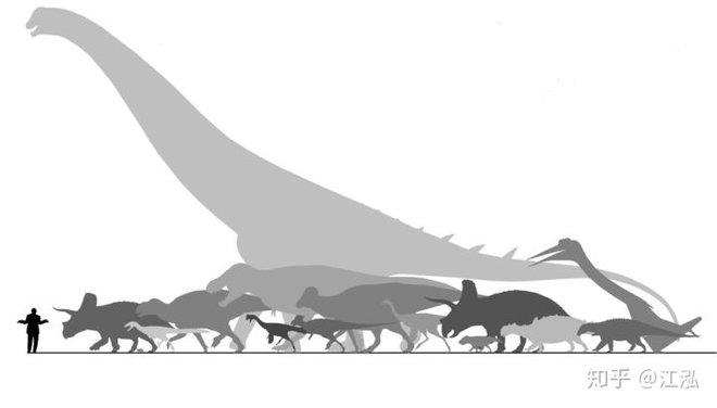 Nghiên cứu mới cho thấy người anh em của khủng long Velociraptor tại Bắc Mỹ có tổ tiên bắt nguồn từ Châu Á - Ảnh 9.