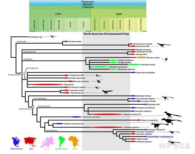 Nghiên cứu mới cho thấy người anh em của khủng long Velociraptor tại Bắc Mỹ có tổ tiên bắt nguồn từ Châu Á - Ảnh 13.