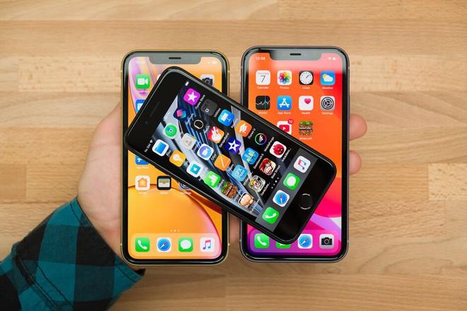 Apple có đang khiến doanh số iPhone 11 bị ảnh hưởng khi tung ra iPhone SE mới - Ảnh 2.