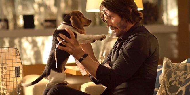 Đạo diễn John Wick từng phải đấu tranh kịch liệt để giữ lại cảnh phim sát hại chú chó trong phần 1 nhằm gây shock cho khán giả - Ảnh 1.
