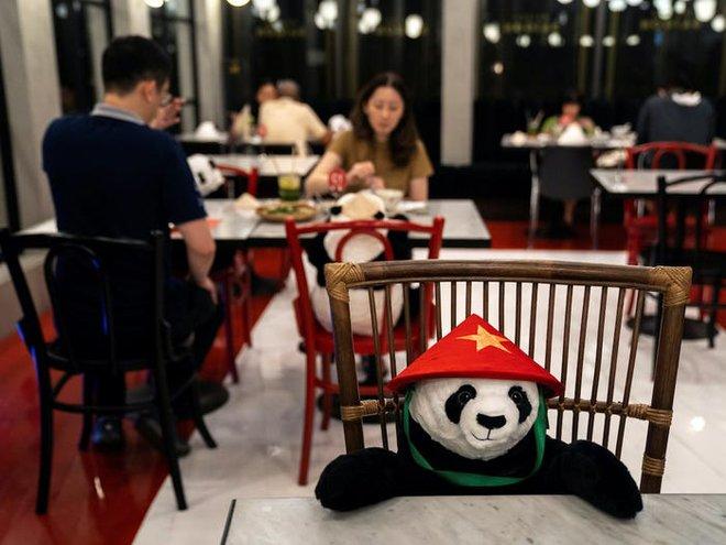 7749 phương pháp giãn cách xã hội cực độc đáo của các nhà hàng trên thế giới khiến ai cũng phải mỉm cười - Ảnh 7.