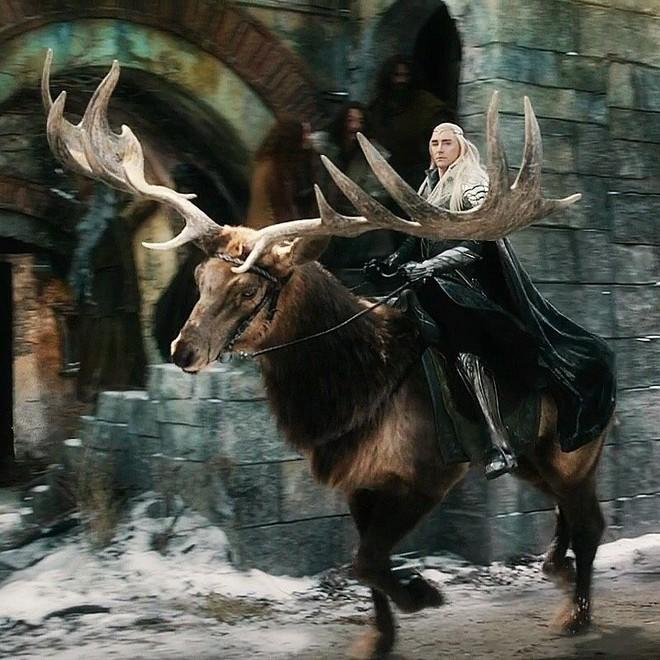 Thú cưỡi của Thranduil trong The Hobbit là hoàn toàn có thật? - Ảnh 1.