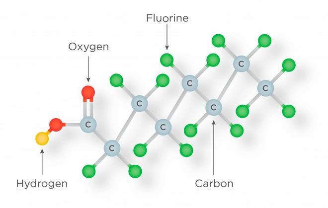Đâu là hóa chất độc nhất trên đời, chỉ vài trăm nanogram cũng có thể gây chết người? - Ảnh 2.
