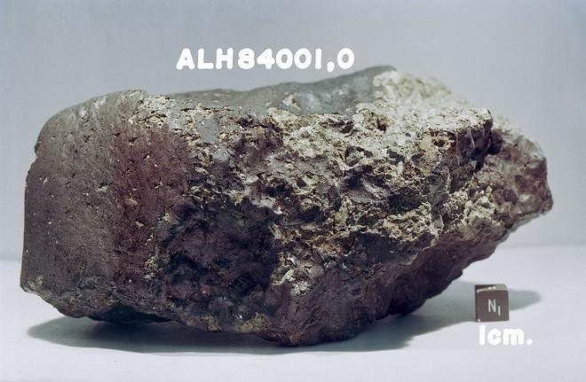 ALH84001
