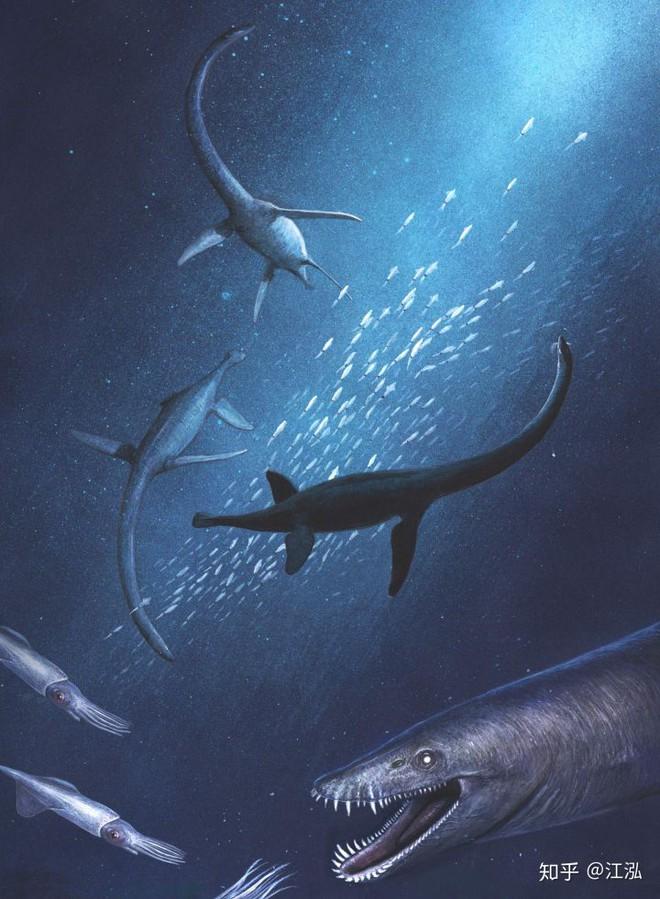 Các nghiên cứu phát hiện ra rằng những con thằn lằn cổ rắn thời tiền sử có khả năng lặn tương tự với cá nhà táng hiện đại - Ảnh 10.