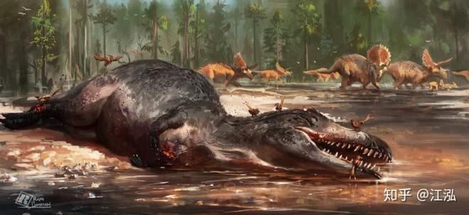 Vô tình phát hiện ra loài cá mập mới trong khi phân loại hóa thạch Tyrannosaurus rex - Ảnh 13.