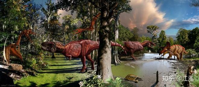 Vô tình phát hiện ra loài cá mập mới trong khi phân loại hóa thạch Tyrannosaurus rex - Ảnh 12.