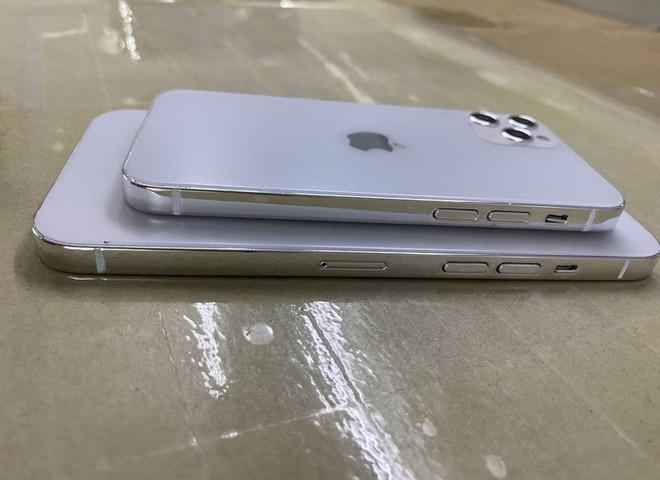 Lộ diện mô hình khá hoàn thiện của iPhone 12, 3 kích thước màn hình khác nhau, khung viền giống iPad Pro - Ảnh 2.