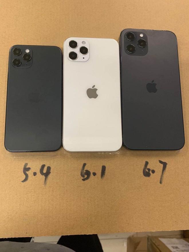 Lộ diện mô hình khá hoàn thiện của iPhone 12, 3 kích thước màn hình khác nhau, khung viền giống iPad Pro - Ảnh 3.