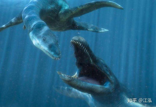 Predator X: Quái vật biển cả đáng sợ nhất kỷ Jura - Ảnh 16.