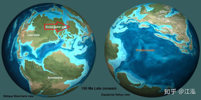 Predator X: Quái vật biển cả đáng sợ nhất kỷ Jura - Ảnh 15.