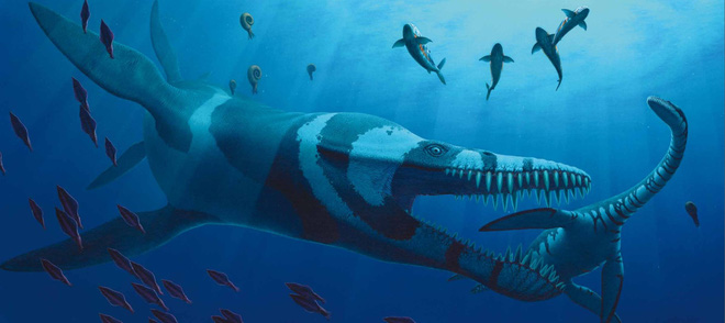 Predator X: Quái vật biển cả đáng sợ nhất kỷ Jura - Ảnh 1.