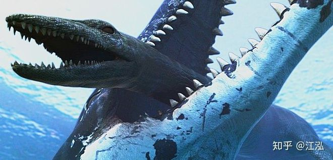 Predator X: Quái vật biển cả đáng sợ nhất kỷ Jura - Ảnh 17.
