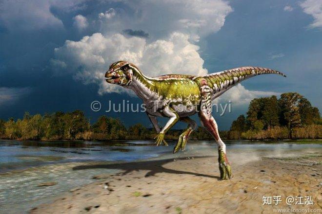 Phát hiện loài khủng long sống dưới lòng đất 100 triệu năm trước - Ảnh 6.