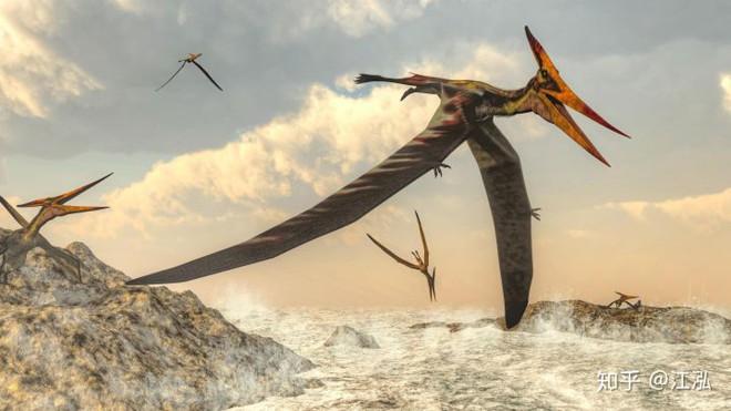 Bằng chứng khảo cổ cho thấy cá mập cổ đại đã phi lên khỏi mặt nước để tấn công thằn lằn bay - Ảnh 3.