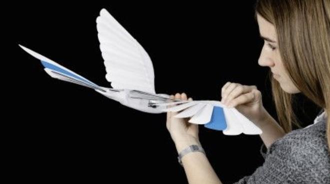 Drone xưa rồi, thời đại của chim robot đã đến - Ảnh 5.