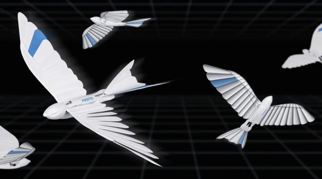 Drone xưa rồi, thời đại của chim robot đã đến - Ảnh 1.