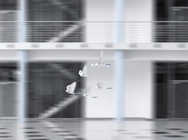 Drone xưa rồi, thời đại của chim robot đã đến - Ảnh 4.
