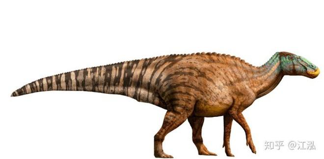 Phát hiện ra xác ướp khủng long có dấu chân hình móng ngựa tại Hoa Kỳ - Ảnh 4.